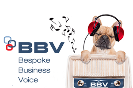 Bespoke Business Voice
