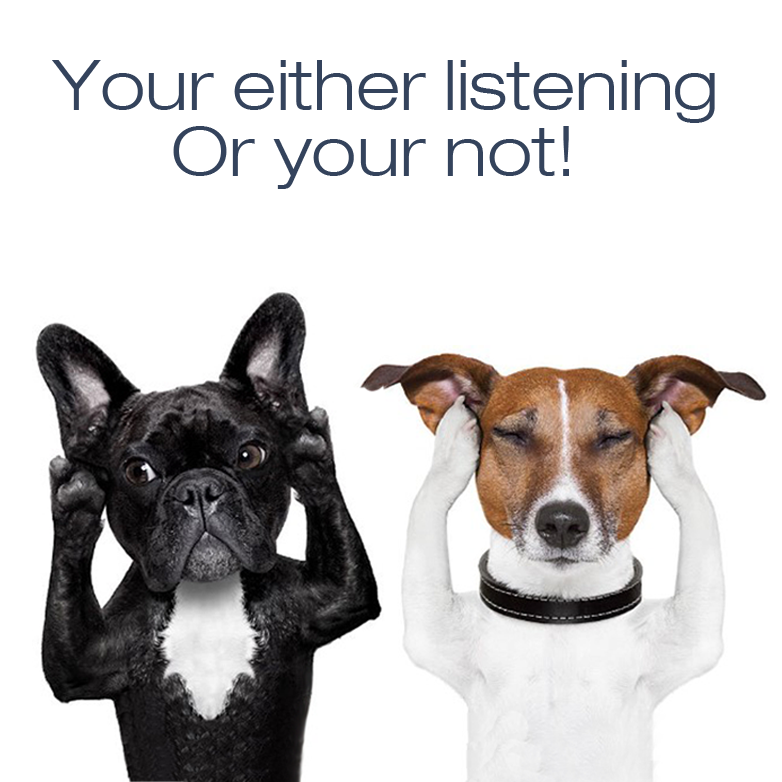 How to listen to the opinions of your customers.