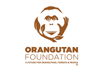 The Orangutan Foundation