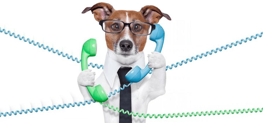 Who is answering your client calls