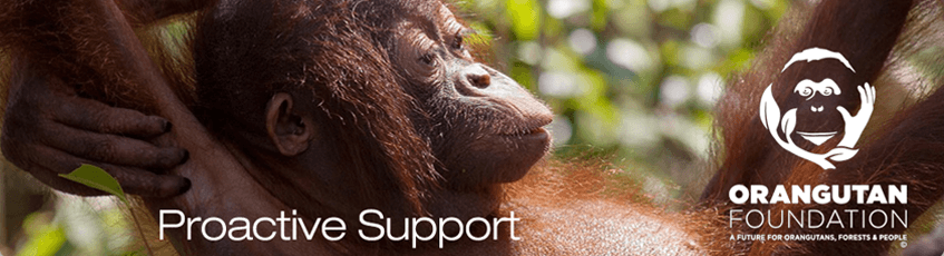 08UK Adopts Two Orangutans further supporting The Orangutan Foundation UK